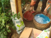 金果儿高钾水溶肥在莘县3