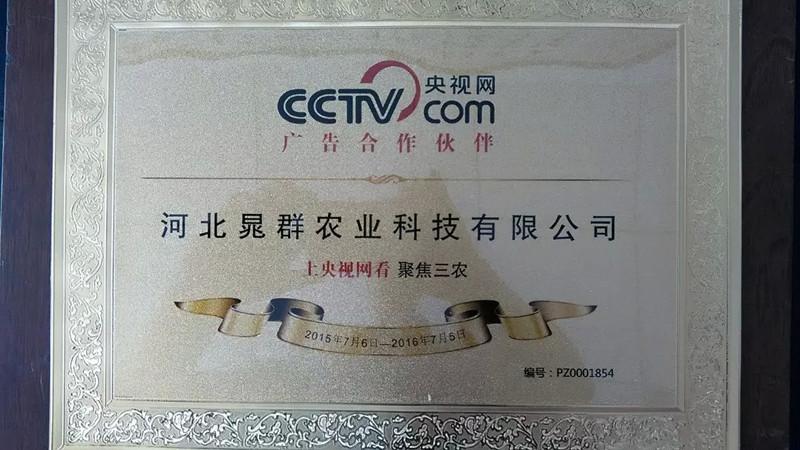 央视网合作伙伴